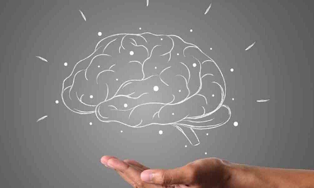 10 datos que se desconoce sobre el cerebro humano